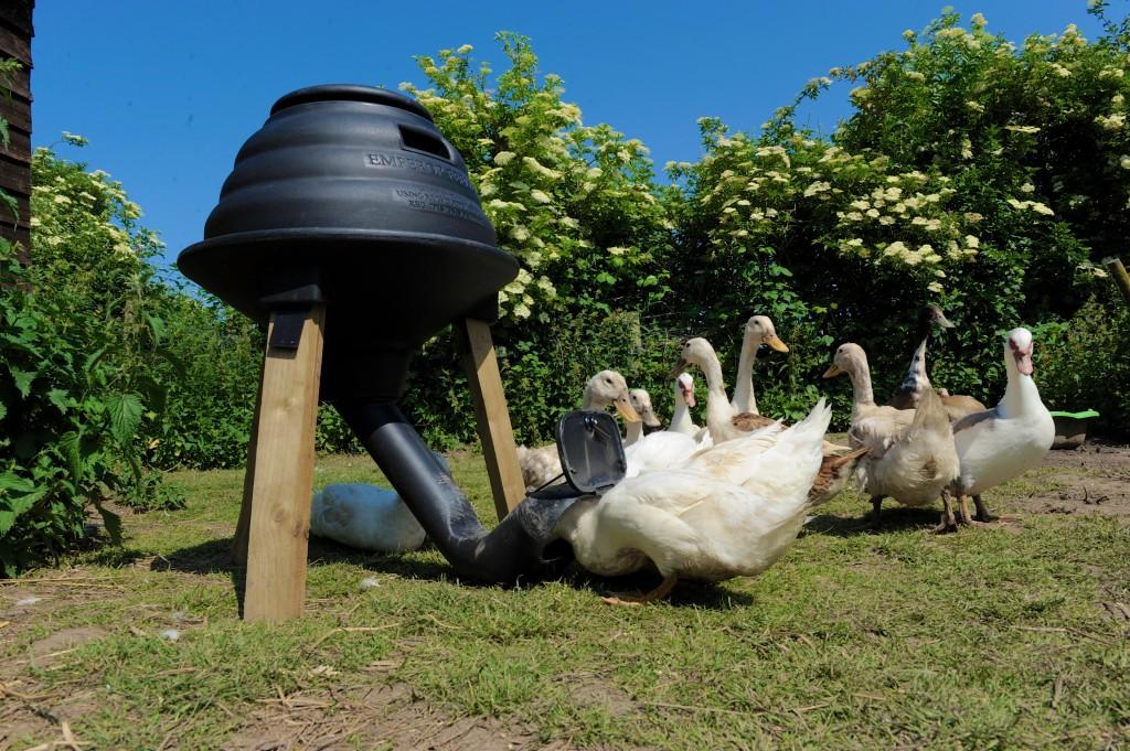 The Duck Feeder Attachment